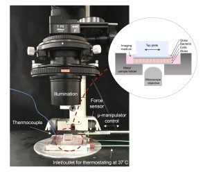 Live-Cell Monolayer Rheometer (LCMR) instrument