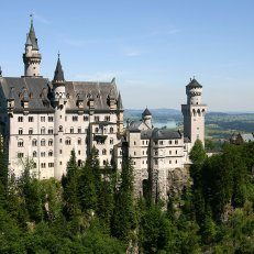 A German castle surrounded by evergreen trees.
