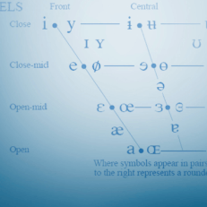 Diagram illustrating different types of vowel sounds.